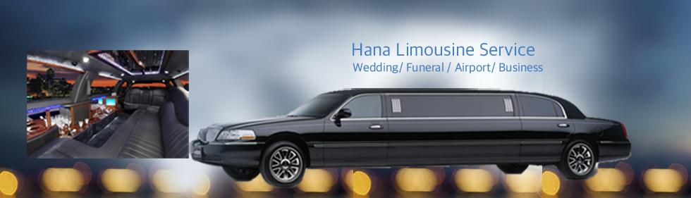 limousine banner